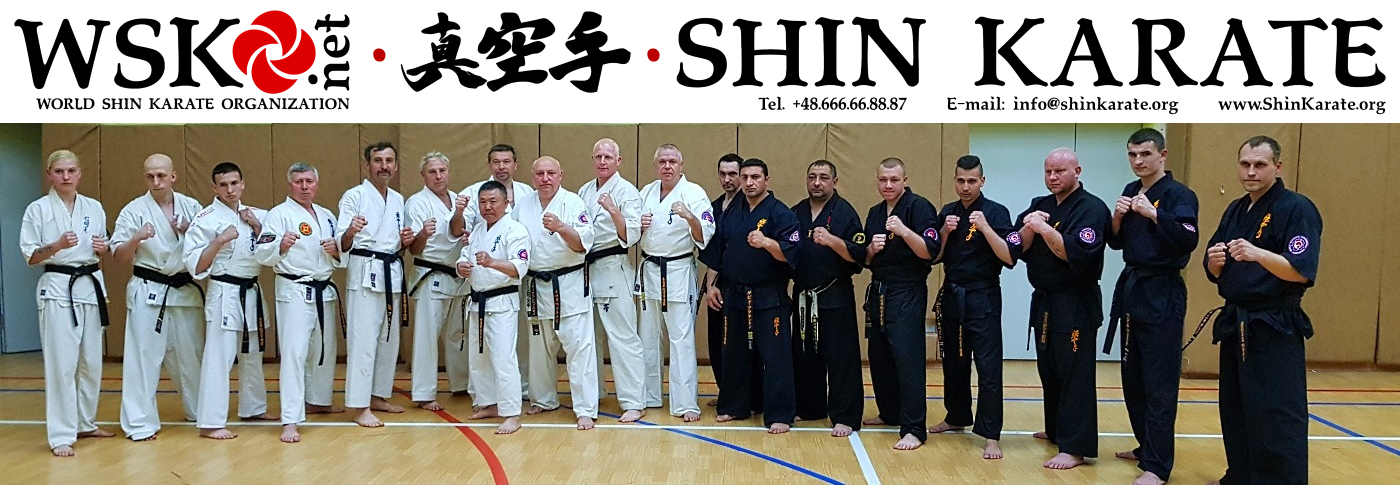 WSKO • World Shin Karate Organization • Шин Карате • 全世界真空手連盟