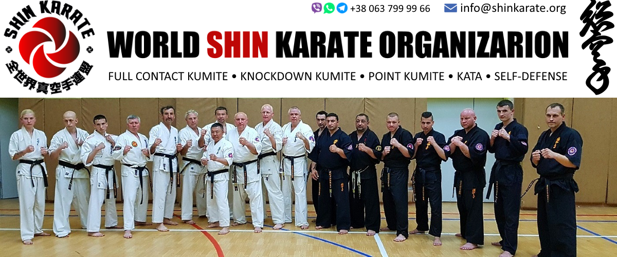 World Shin Karate Organization